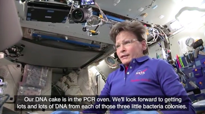 iss-dna-found-ab